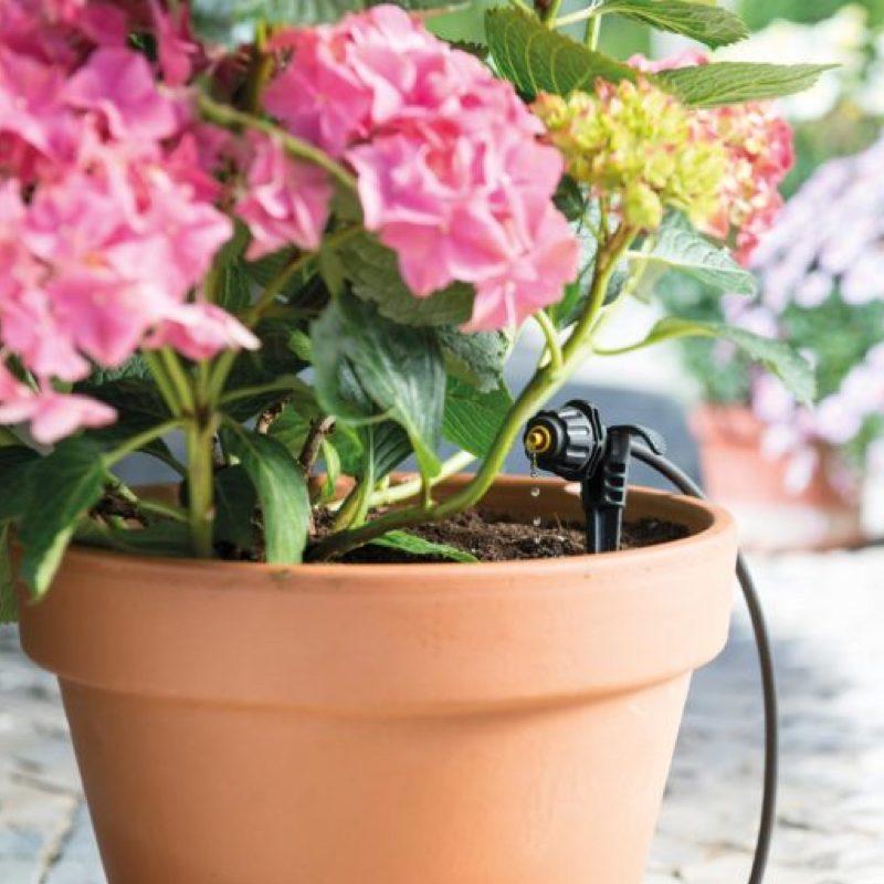 micro-kit-irrigation-hozelock-easy-drip-arrosage-jardin-7024-2