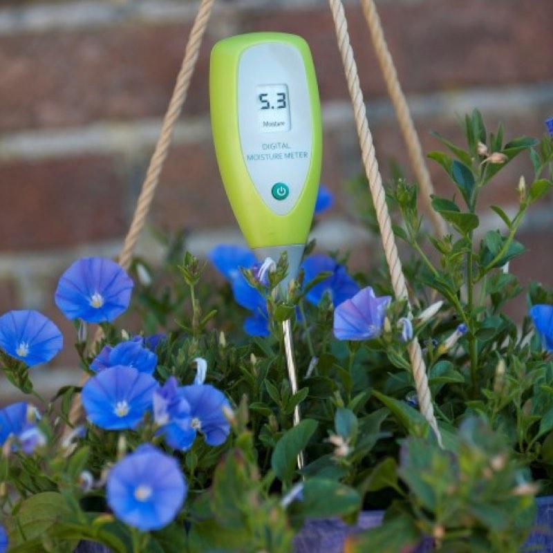 nature-capteur-humidité-sonde-hygromètre-0