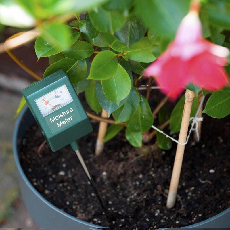 senso-nature-mesure-humidité-jardin-1